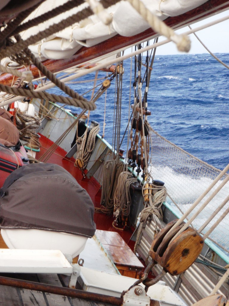 Trade winds in the Roaring Forties