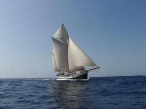 tecla on the ocean