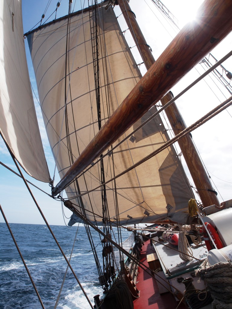 Rounding of Cape Horn and changing weather
