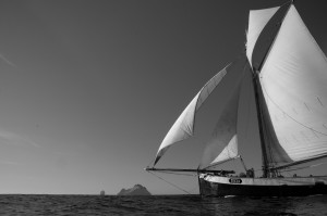 Tecla sailing in Scotland