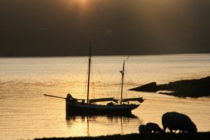 Tecla on the Orkneys
